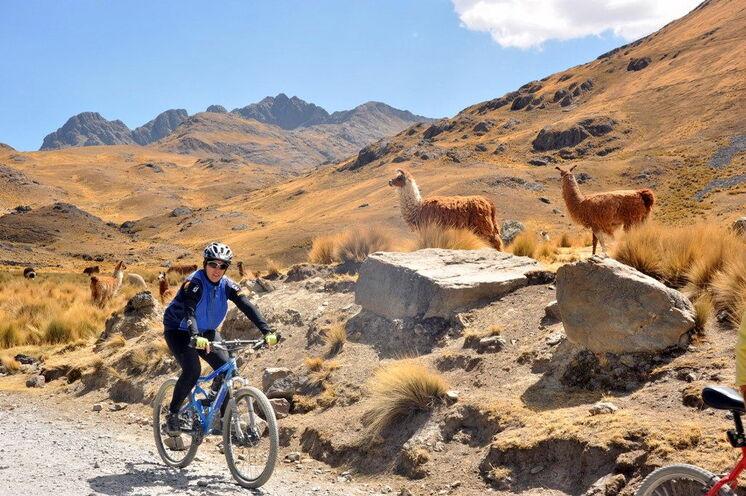 Mitten durch die Anden mit ihren typischen Bewohnern