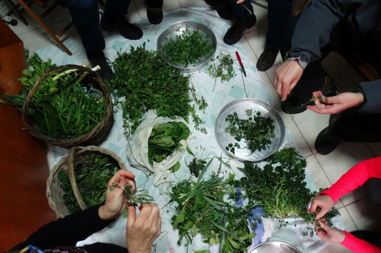 Vorbereitung zum einmalig natürlichen Kochvergnügen