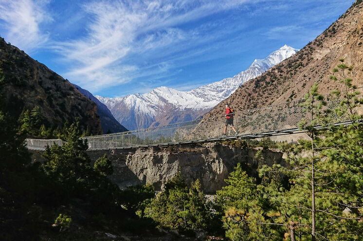 Die langen Hängebrücken bieten einmalige Ausblicke und tolle Fotomotive