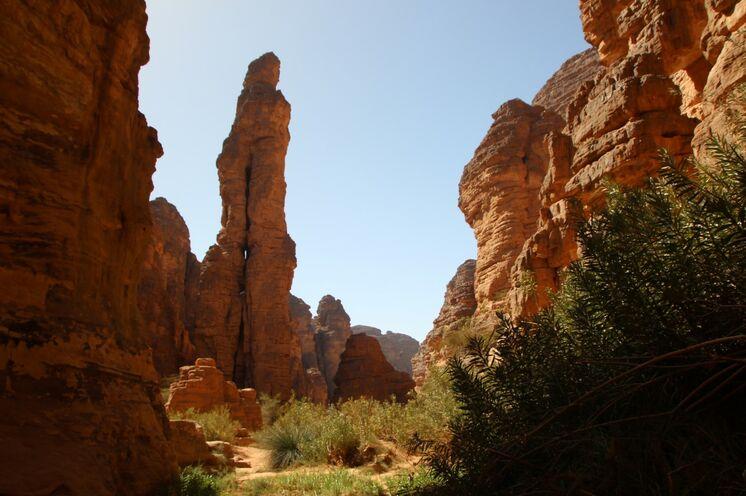 Im grünen Essendilène-Canyon: wer möchte, unternimmt hier eine kleine Wanderung bis zu einem Guelta (Wasserloch)