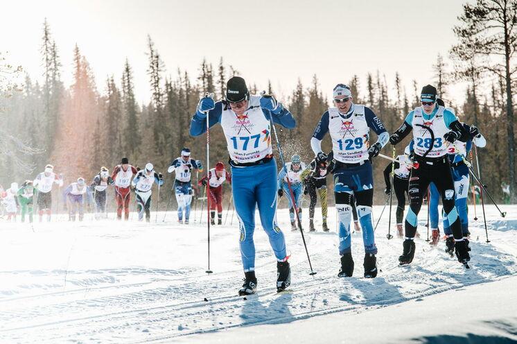Das Rennen hat einen historischen Hintergrund, der bis ins Jahr 1884 zurückreicht, als der Polarforscher Adolf Erik Nordenskiöld seine Mannschaft bei einer Expedition eine unglaublich lange Strecke zurücklegen ließ.