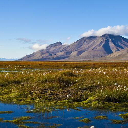Aktiv auf Spitzbergen