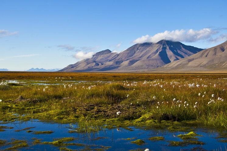 Spitzbergen im Sommer. Eisfrei ist das Archipel jedoch nie. Mehr als 60 % der Landfläche liegen dauerhaft unter Eis.