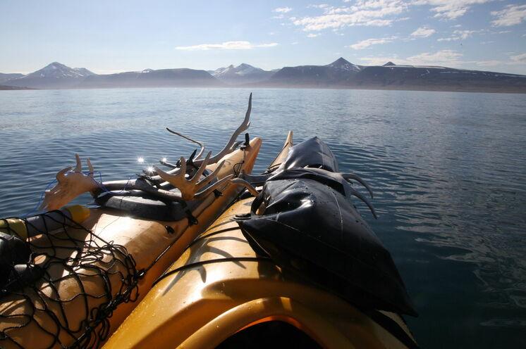 Ausgiebige Kajaktouren erwarten Sie im Billefjorden hin zum Nordenskiöldgletscher