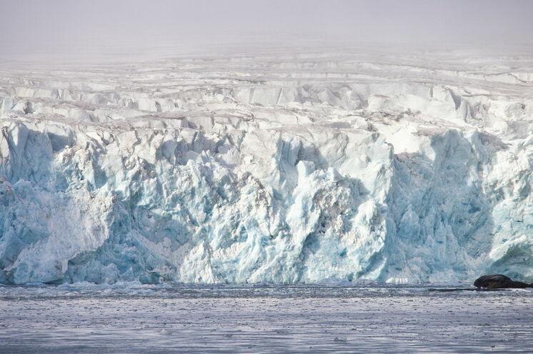 Blau schimmernde Gletscherzungen, die tief in die Fjorde hineinreichen