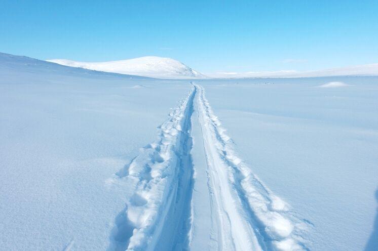 Ihre Spuren im Schnee...Viele andere Spuren werden Ihre hier oben nicht kreuzen