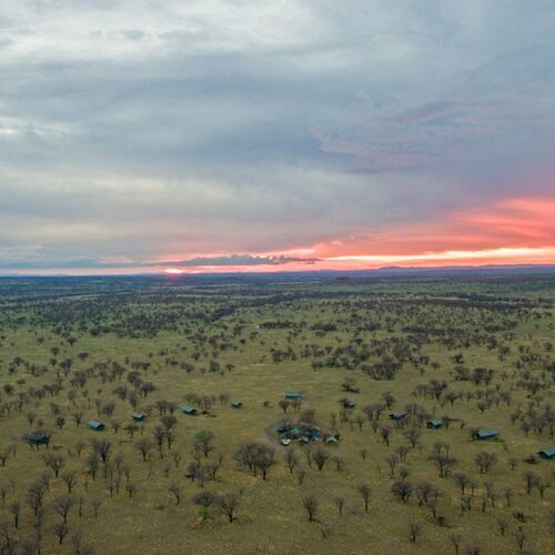 Auf Ostafrikas berühmtester Safari-Route in besonders kleiner Reisegruppe