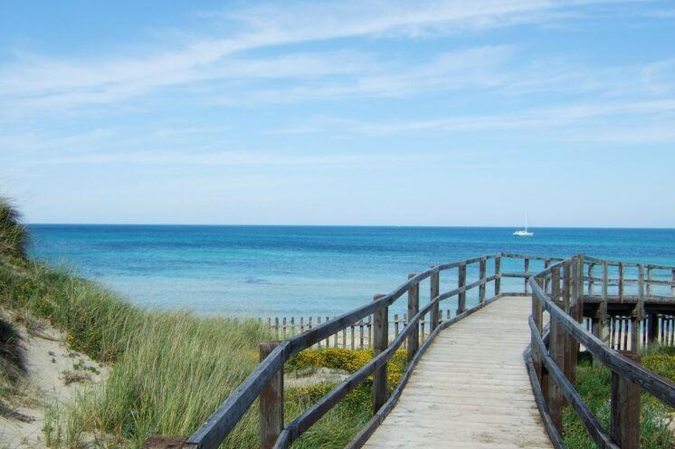 Bei einer Strandwanderung erleben Sie die naturbelassene Küste Apuliens