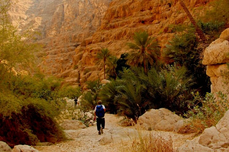 Durch vegetationsreiche Gegenden, vorbei an Steilwänden ...