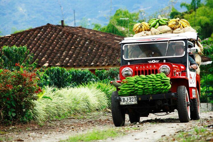 Zwischen 1000 und 2000 hm werden die besten Hochlandkaffees der Welt angebaut