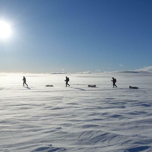 Fjellskitour durch die Hardangervidda