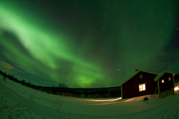 Mit etwas Glück können Sie während Ihrer Reise Polarlichter sehen, wie hier über der Ravnastua Hütte