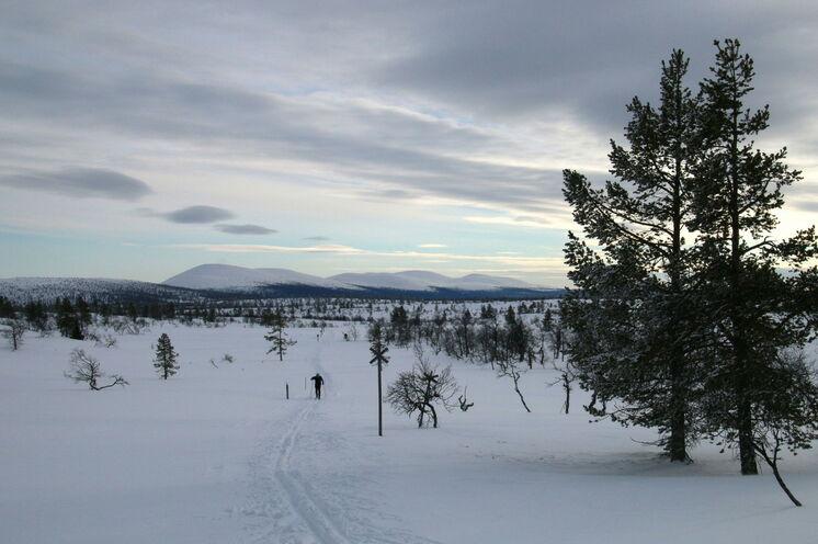 Genießen Sie die schier endlosen Weiten Lapplands
