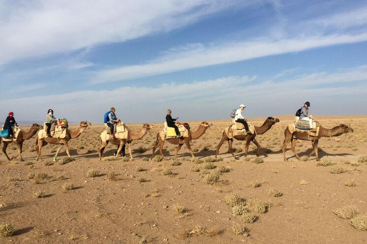 Am 7. Tag wandern Sie zu Fuß und per Wüstenschiff in der iranischen Wüste.