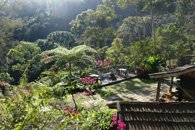 Mitten im Regenwald und nicht so weit weg von Rio