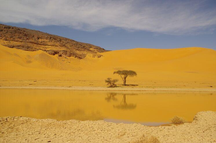 Und mit etwas Glück sorgt auch etwas Wasser in der Wüste für tolle Aufnahmen