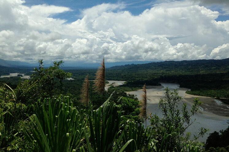 Traumhafte Aussicht auf den Manú Nationalpark