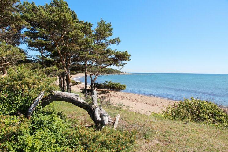 Auf den estnischen Inseln genießen Sie naturbelassende und menschenleere Strände
