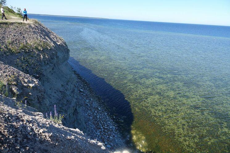 Insel Saaremaa mit der Steilküste Panga und glasklarem Ostseewasser!