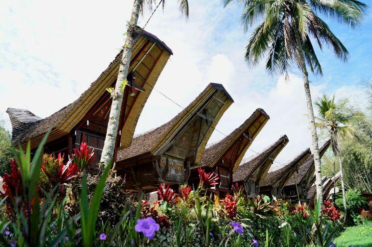 Tongkonan - die Häuser der Toraja erinnern an die Seefahrervergangenheit dieses Bergvolkes