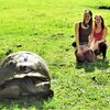 Verlängerung: Galapagos intensiv