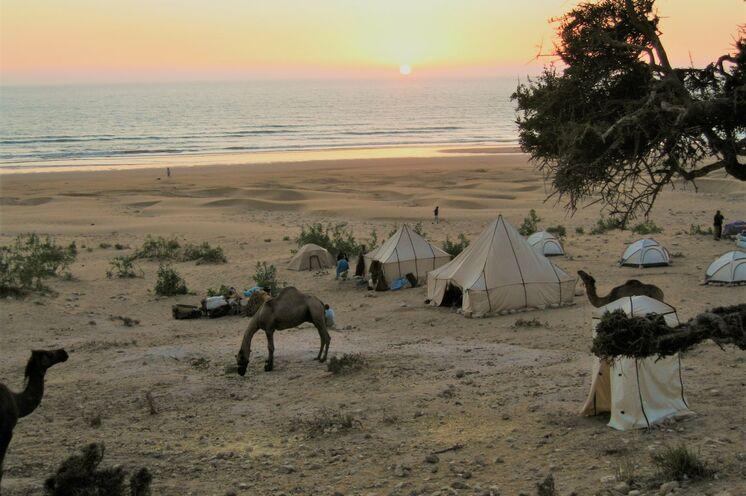 Mit Ihrer Karawane ziehen Sie langsam an der wilden Atlantikküste entlang Richtung Essaouira. Dabei nächtigen Sie in Zeltcamps.
