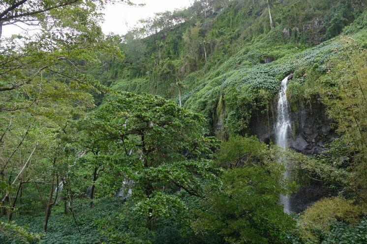 Eine Wanderung führt Sie in das Tal des Bras Rouges.