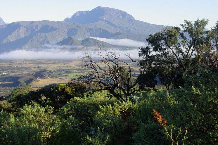 """""""Bonjour"""" auf der tropischen Vulkaninsel la Réunion!"""