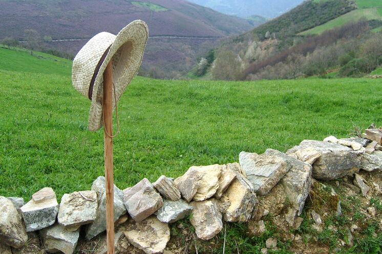 ...entlang von Feldern und Wiesen.