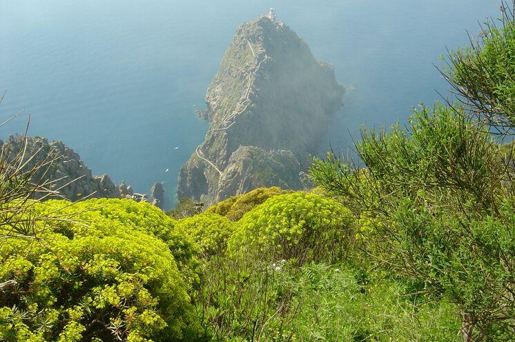 Der Faro della Guardia - Leuchturm an der Südspitze Ponzas.