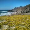 Andalusien – Spaniens reizvoller Süden