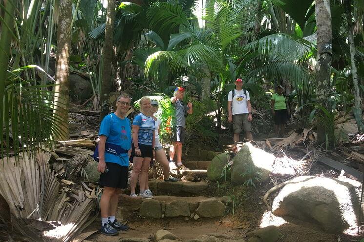 Im UNSECO-Weltnaturerbe wandern Sie durch dichten, unberührten Dschungel.