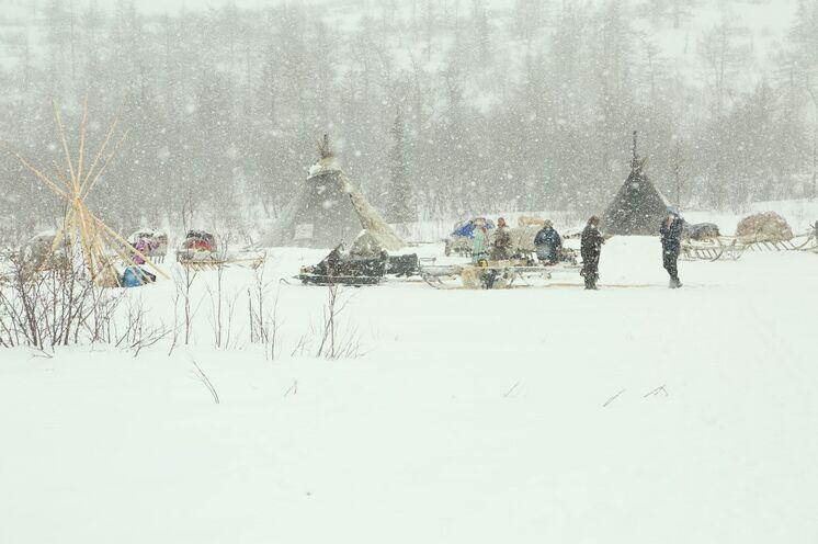 In Familienverbänden errichten die Nenzen ihre Winterlager südlich des Polarkreises in der waldreichen Taiga