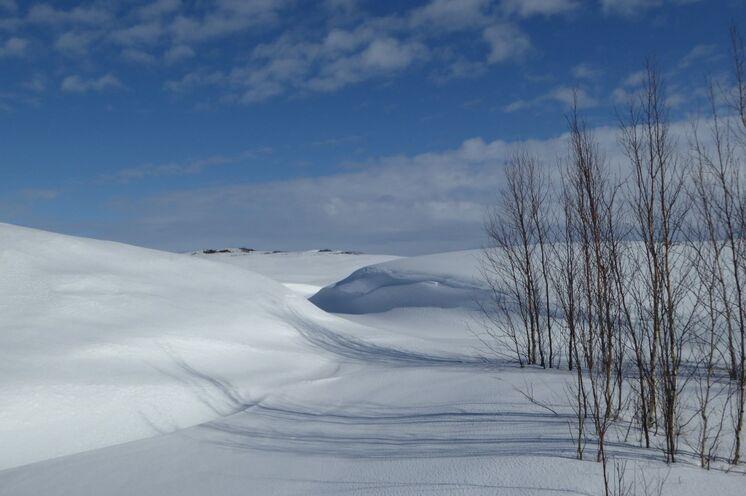 Stapfen Sie mit Schneeschuhen durch eine fast unberührte Winterlandschaft - es ist still, die Luft ist glasklar und das Auge schaut weit!