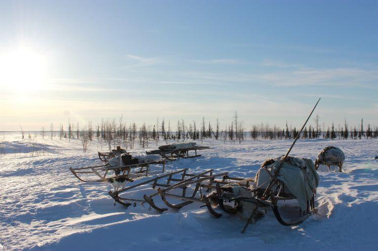 Wenn es die Wetterverhältnisse zulassen, legen Sie alle Wege auf einem Holzschlitten, gezogen vom Schneemobil, zurück.