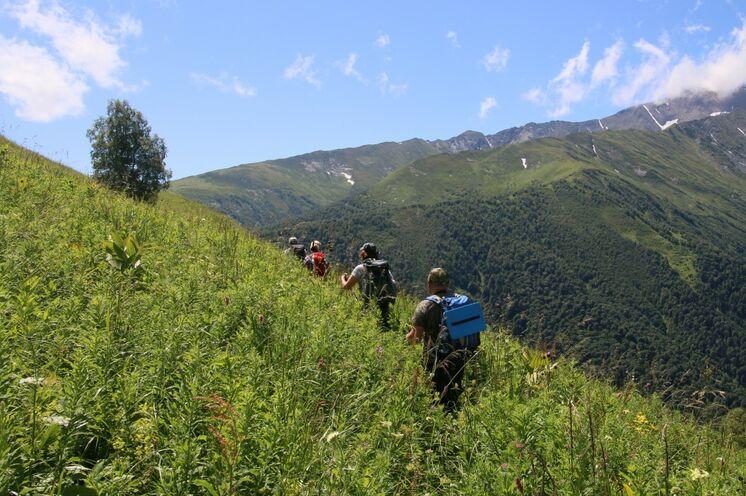 Die Wanderroute führt Sie durch wundervolle Blumenwiesen, zum Teil ist die Vegetation mannshoch.