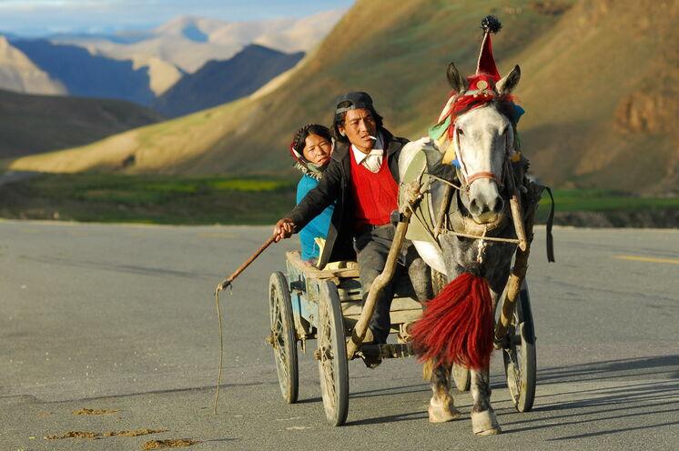Ein noch übliches Gefährt auf den Straßen Osttibets - der Pferdekarren