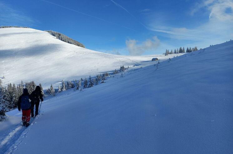 Winterglizerzauber im Januar