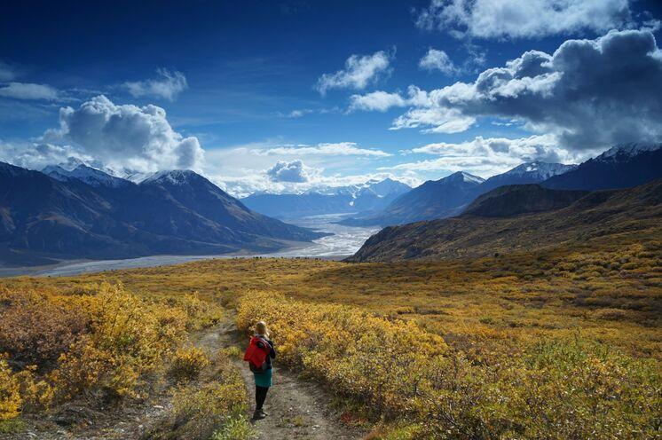 Anfang September färbt sich die Natur im Kluane-NP wunderbar bunt