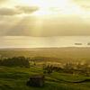 Arnes Azoren - wo der Winter ein Frühling ist