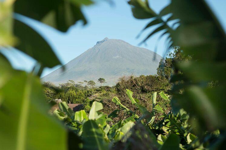Anstrengend aber lohnenswert - Besteigung des Picos, der höchsten Berg der Azoren
