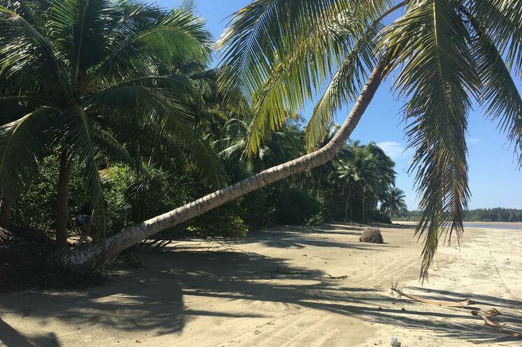 Gönnen Sie sich eine Verlängerung am paradiesischen Ngapali-Strand mit seinen einsamen Buchten