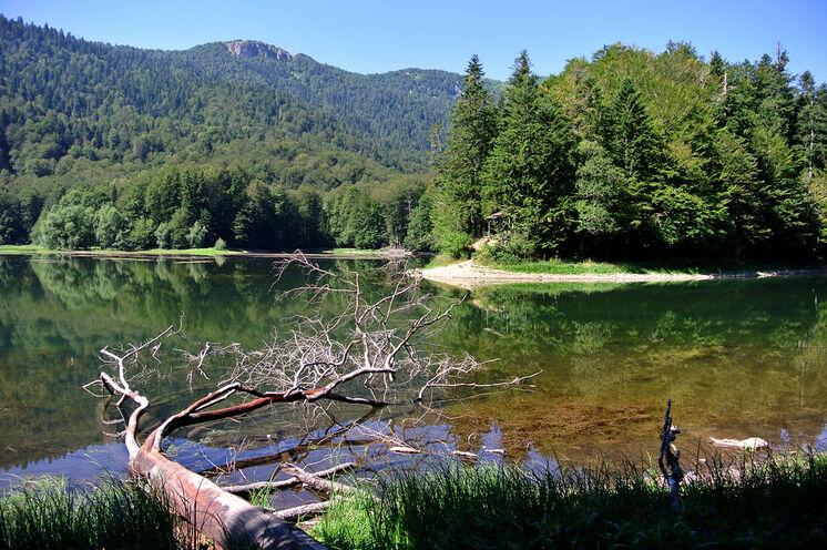 Montenegros urwüchsige Natur beeindruckt mit zahlreichen landschaftlichen Schönheiten