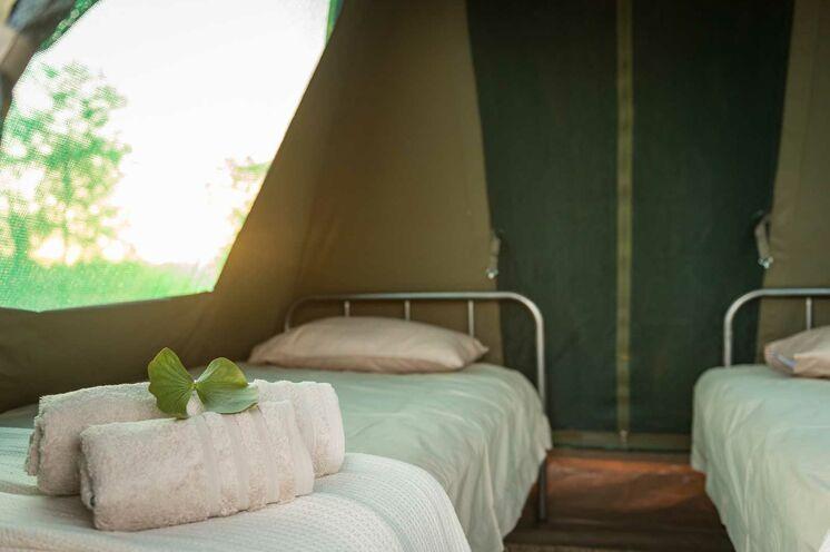 Unsere Ranger sorgen sich um alles. Auf- und Abbau der Zelte ... (© Africa On Foot)
