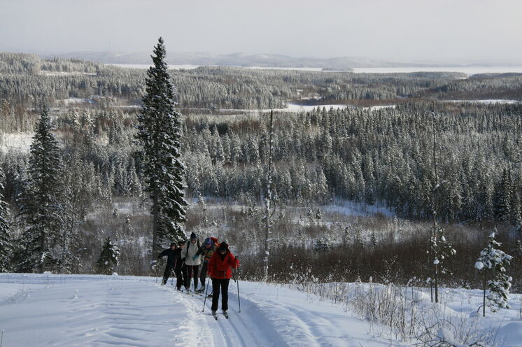 Am 4. Tag steigen Sie auf den Hungerberg und genießen wunderschöne Winterlandschaften