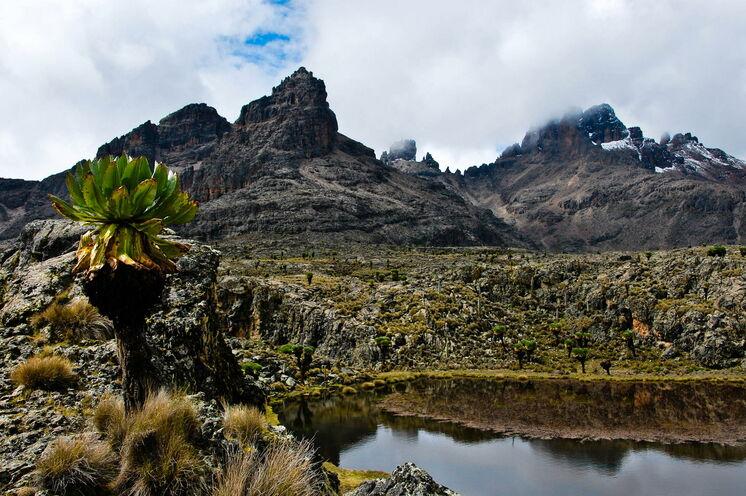Blick auf die Gipfelregionen des Mt. Kenya (Chris Murphy, via Flickr - CC BY-ND 2.0)