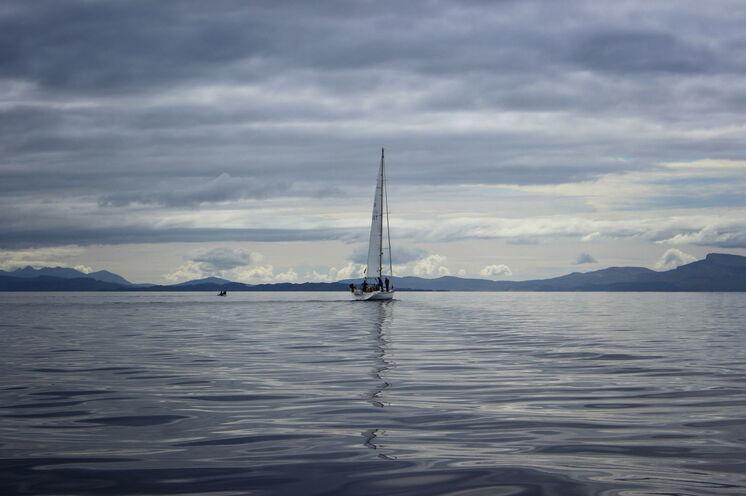 Nutzen Sie freie Tage für einen Perspektivwechsel: Ein Drittel der Wale passiert die Gewässer rund um die Hebriden.