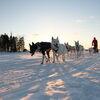Vuokatti - Aktive Erlebnisreise in Wildromantischer Winterwelt