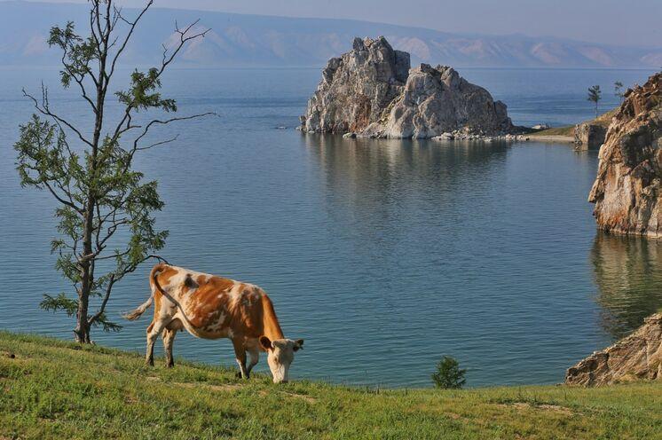 Baikalsee: Insel Olchon mit Schamanenfelsen