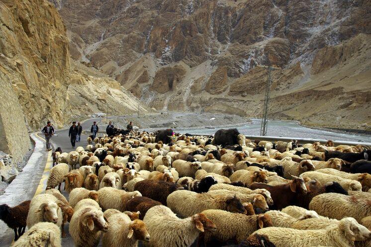 Stau auf dem Karakorum Highway auf dem Weg zum Khunjerab Pass